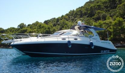 Motorboot Sea Ray 375 (2006)